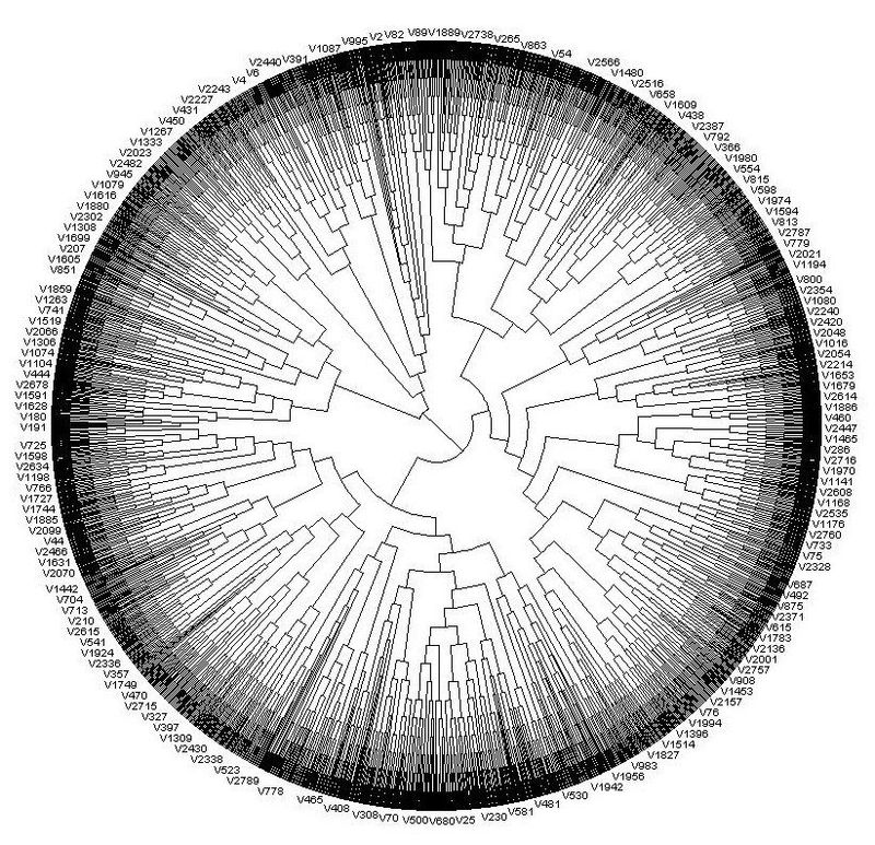 Circular_cladogram