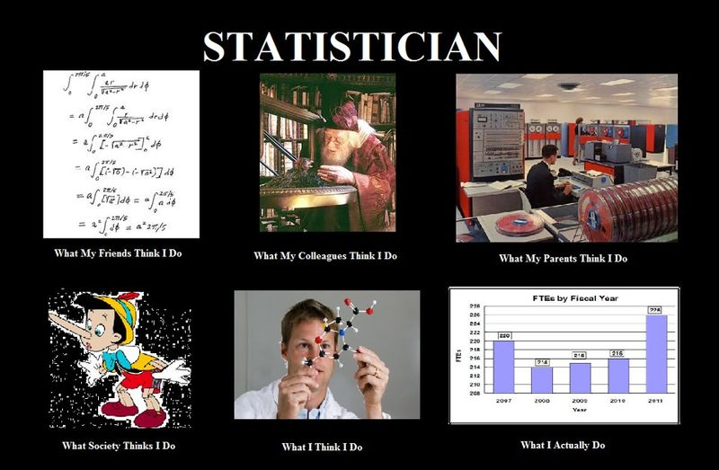 What_statisticians_do