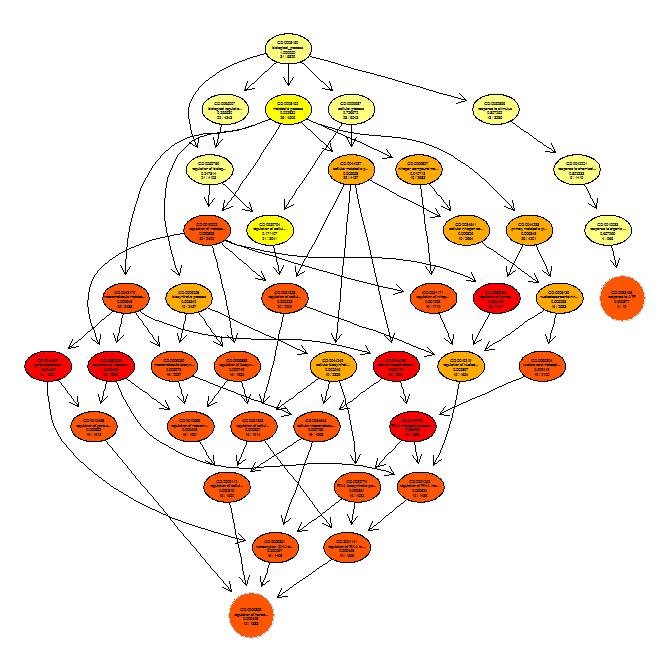 Gene_ontology_graph